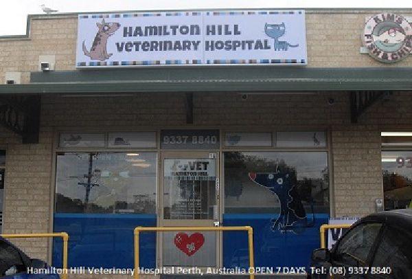 Hamilton Hill Vet Hospital (08) 9337 8840 Open 7 Days